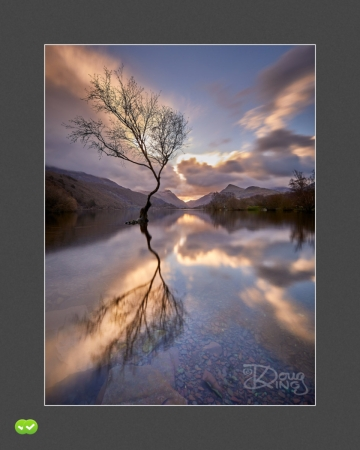 Reflection of Solitude