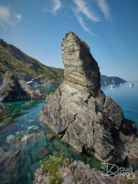 Rock Pinnacle