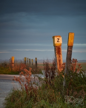 Old wooden posts of a Salisbury Plain tank crossing in sunrise light.    Size: 5636 x 7045, 30.5MB