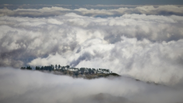 A tree lined mountain top surrounded by a sea of clouds.     Size: 6119 x 3442